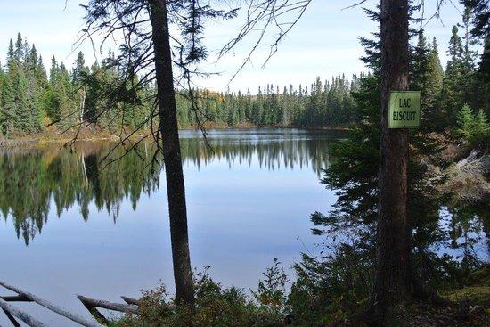 La Seigneurie du Triton: Promenade au lac Biscuit