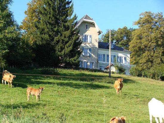 Montchateau: El hotel
