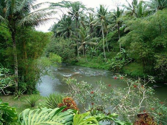 Villa Semana : vue en contre-bas de la piscine, à côté du spa