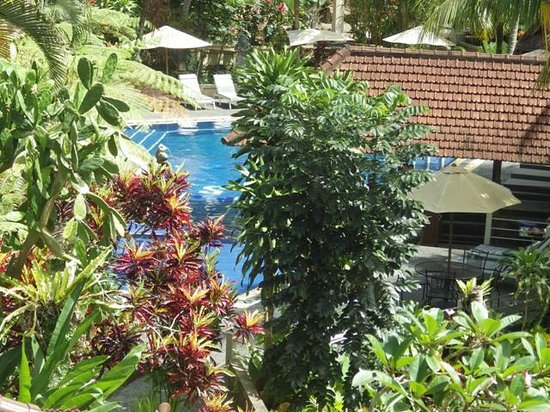 Bali Spirit Hotel and Spa: View from River Villa
