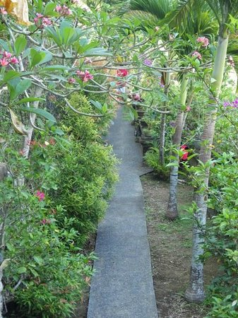 Bali Spirit Hotel and Spa: Grounds