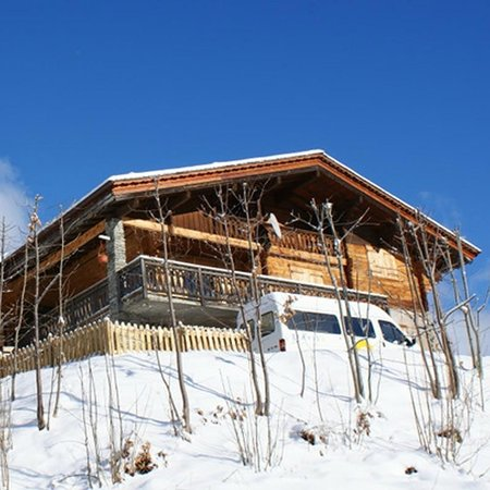 Chalet Fan La Bise: large property great fro groups of up to 12