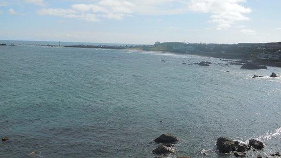 Cape Inubozaki : 海岸線
