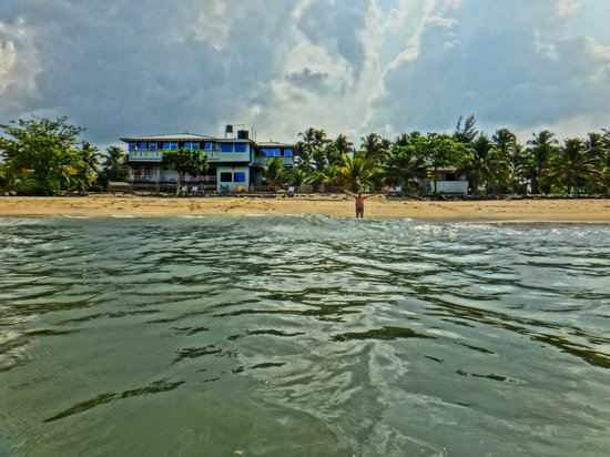 Sealine Beach Resort: Hotel view from the sea