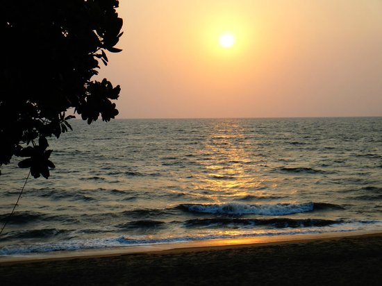 Sealine Beach Resort: sunset