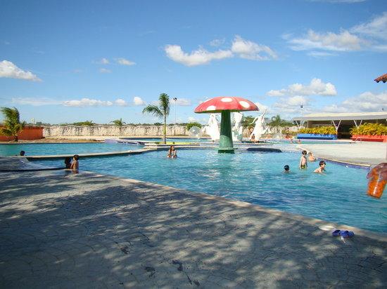 El Senor de los Alinos: El área de la piscina