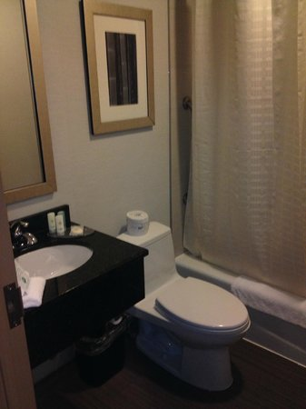 Comfort Inn Midtown West: Modern Bathroom