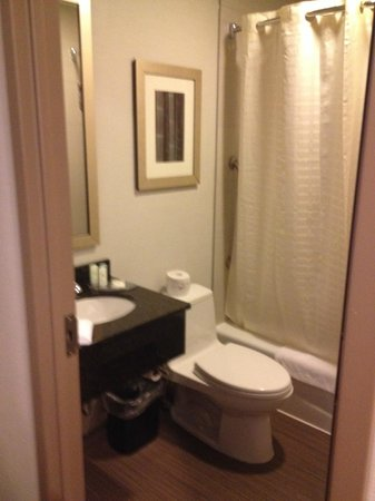 Comfort Inn Midtown West: Bathroom