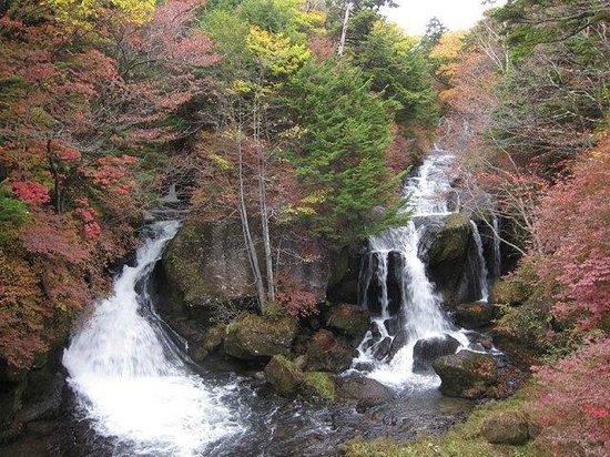 Ryuzu Waterfall: 2013年10月19日滝見茶屋から撮影