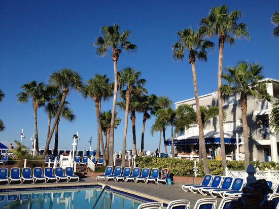 Standard Hotel Room Picture Of Guy Harvey Outpost A Tradewinds Beach Resort St Pete Beach
