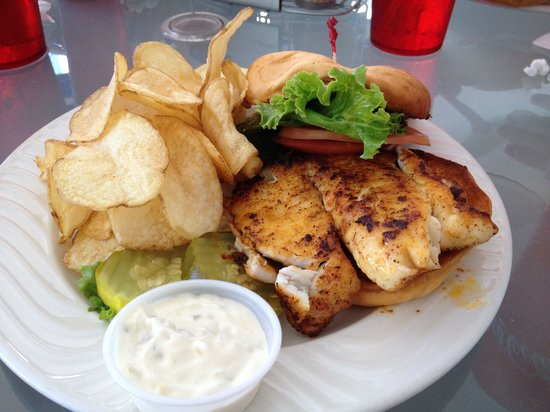 Guy Harvey Outpost, a TradeWinds Beach Resort: Tilapia sandwich at Guys Gulfside Grill