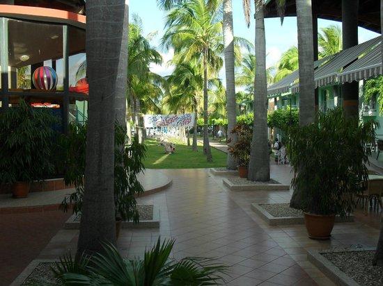 Be Live Experience Turquesa: Entrada al hotel