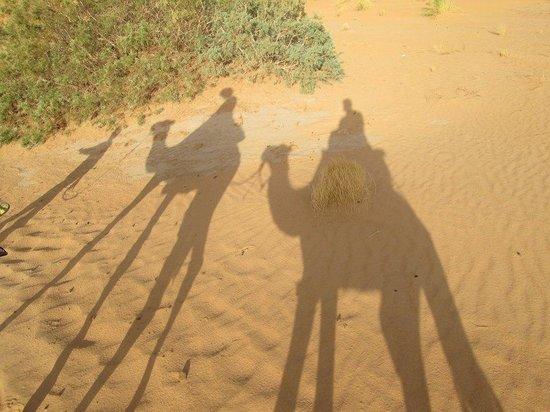 Dar el Khamlia : the desert camel trek