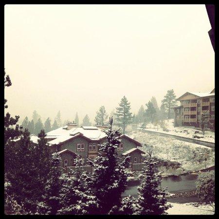 Juniper Springs Resort: View from balcony