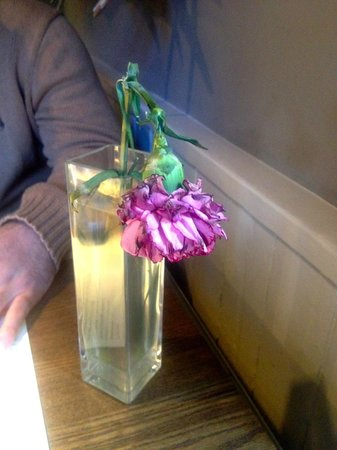 Plough & Harrow: dead carnation in stagnant water ! ( all tables concerned )