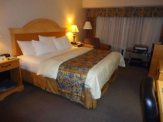 Red Lion Hotel Rosslyn Iwo Jima: De kamer vanuit een andere hoek.