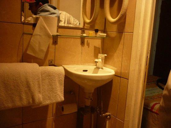 Hotel La Potiniere: problema lavandino per uccelli