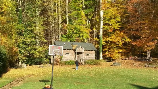 Banner Haven B&B and Cabin Rentals : The cabin
