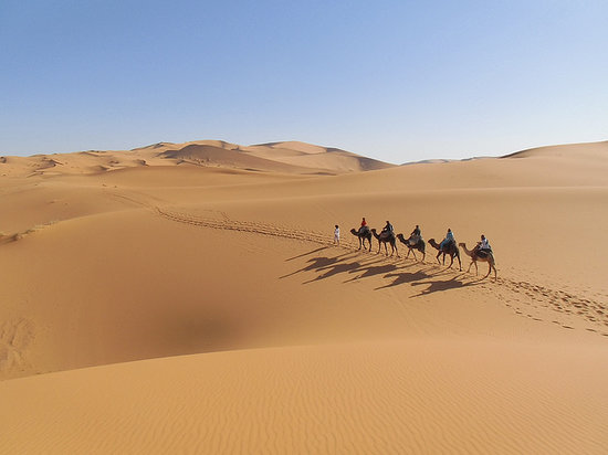 Desert Tours Marocco  Day Tours