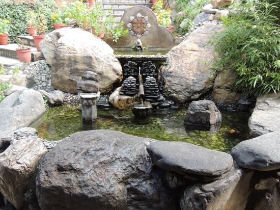 Riverside Springs Resort : the magical seesaw....