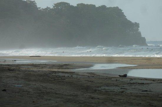 Mi Casa Hostel El Tesoro: Playa Cocles, across the road from El Tesoro
