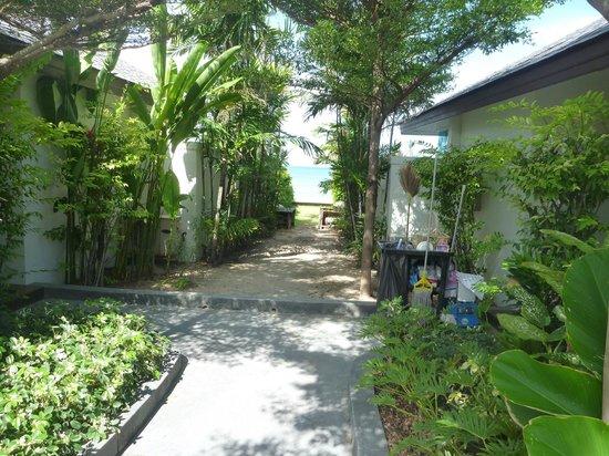 Samui Resotel Beach Resort: Walk way outside the door