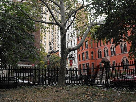 Hotel 17: piccolo parco davanti all'hotel (pieno di scoiattoli!!)