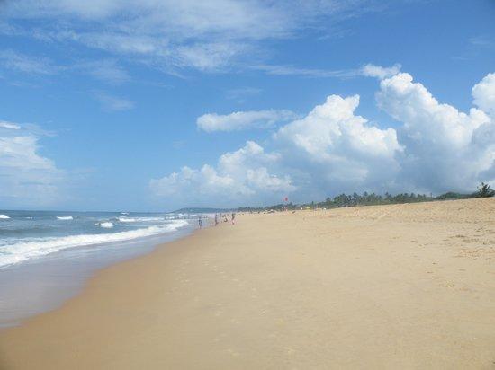 Whispering Palms Beach Resort: Beach