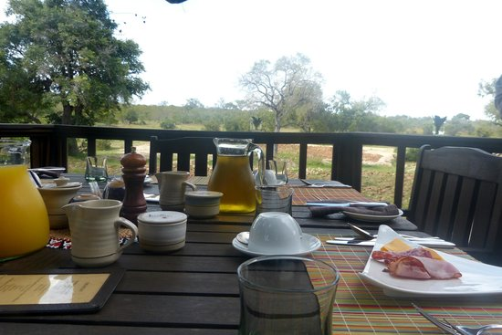 Ulusaba Safari Lodge : Where Breakfast was Served - overlooking watering hole