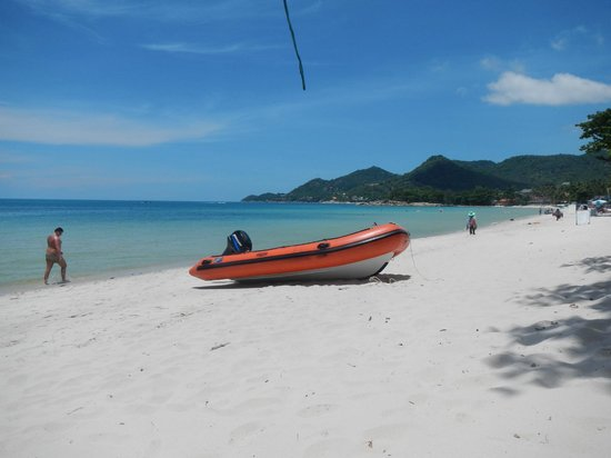 Chaweng Cove Beach Resort: Beach area