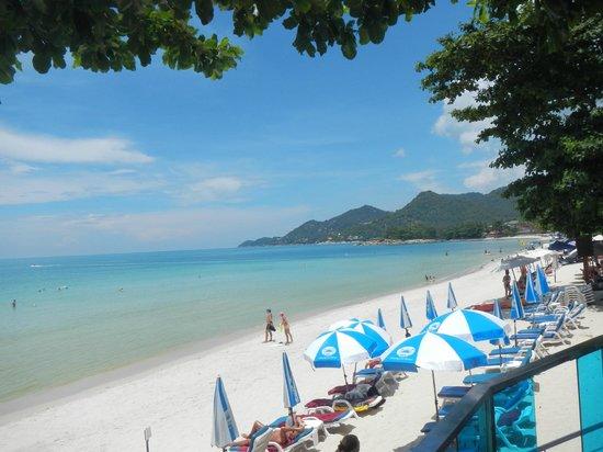 Chaweng Cove Beach Resort : Beach area