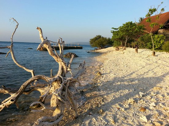 Pulau Umang Resort & Spa : One of the beaches