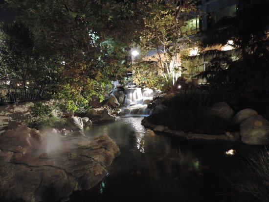 Disneyland Hotel: Waterfall and replica of Old Faithful on the grounds