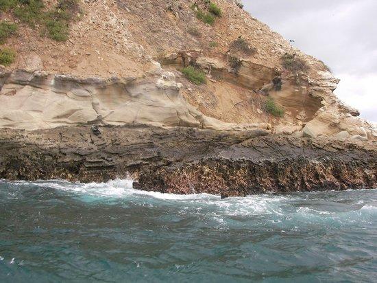 Hostal Machalilla: Isla del Sucre