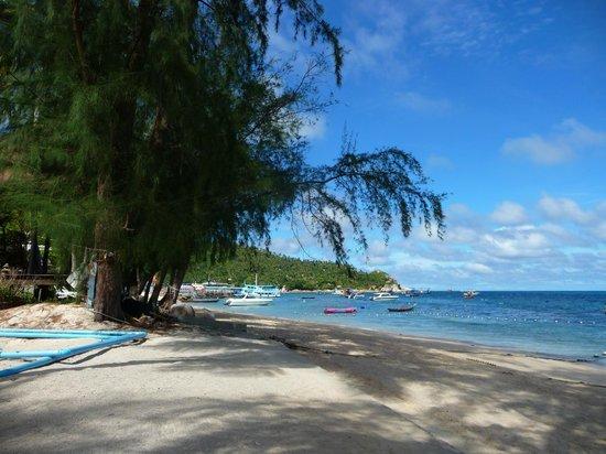 Charm Churee Villa : point de vue depuis la plage de l'hotel