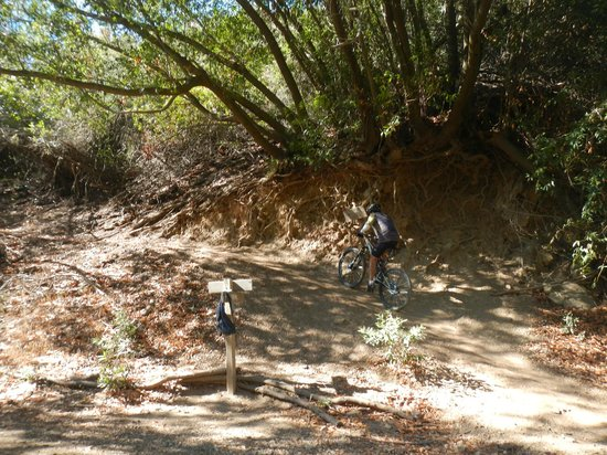 Cal Coast Adventures : Romero trail