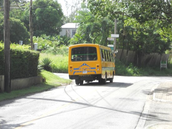 Bayfield House: Yellow bus