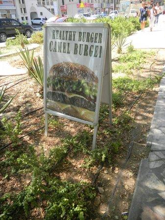 Local House Restaurant: Camel Burger = healthy