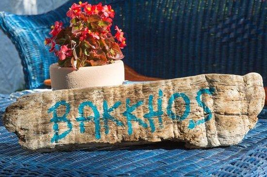 Bakkhos Guesthouse: naambord