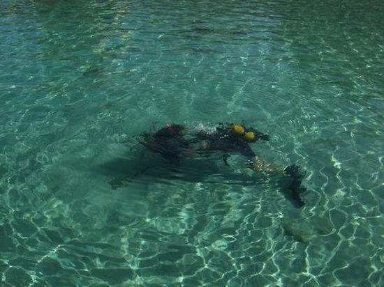 Neptunes Diving Malta: Exercises in the bay with Franca