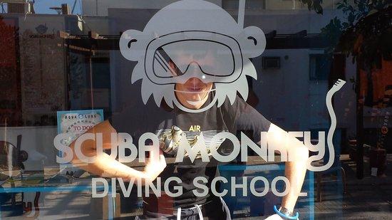 Scuba Monkey Ltd: Scuba Monkey!