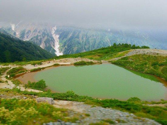Happo Pond: 8月の八方池