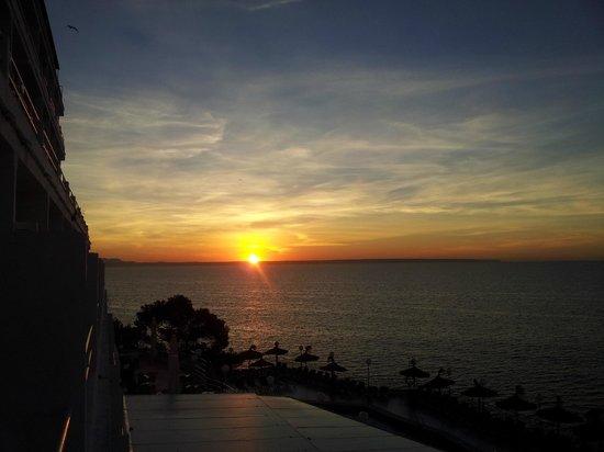 Universal Hotel Florida: sunrise