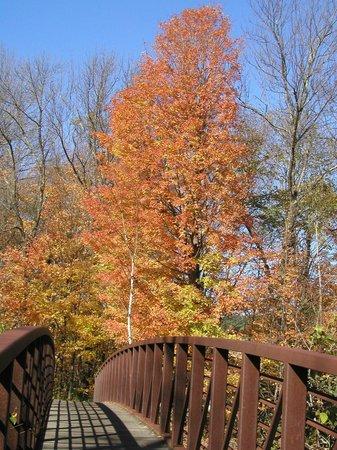 Golden Eagle Resort: Recreation path