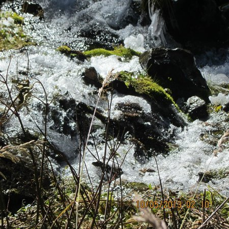 Williams Lake : Creek flowing next to path