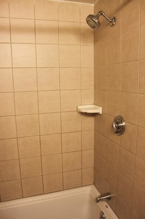 Best Western Merrimack Valley: Shower and tub