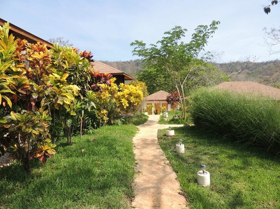 Lodge Margouillat : Promenade dans le jardin