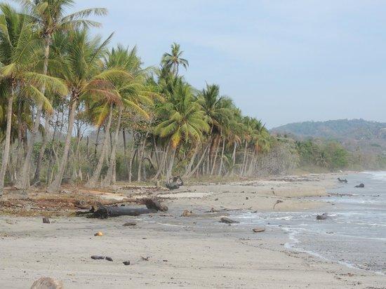 Lodge Margouillat : Promenade a la plage