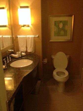 Hilton Orlando: bathroom