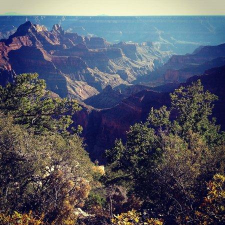 Grand Canyon Lodge - North Rim: Into the Rim